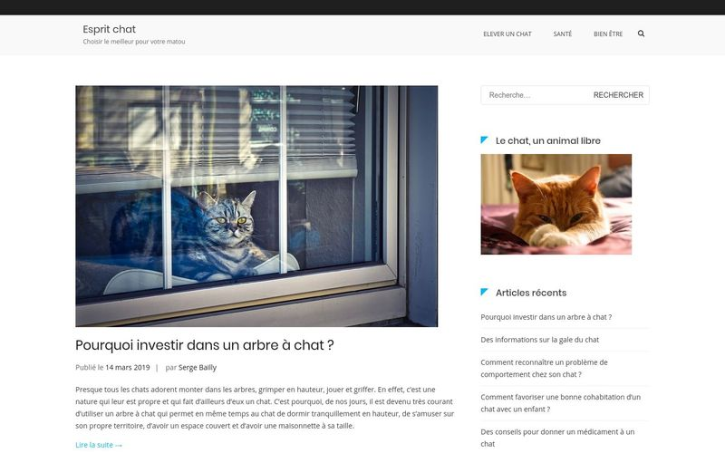 Chat qui miaule, quelle signification ?
